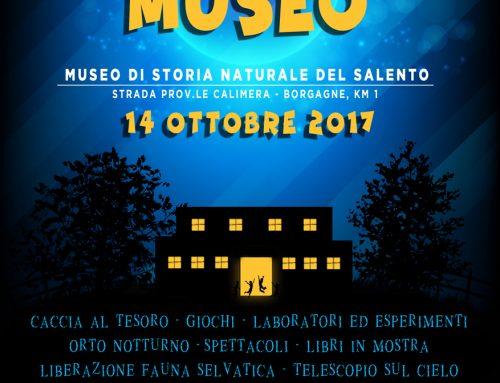 VIVERE IL MUSEO DI NOTTE