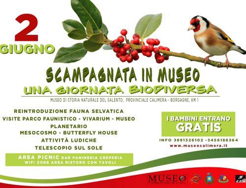 Sabato 2 GIUGNO è festa in Italia, è festa in Museo!