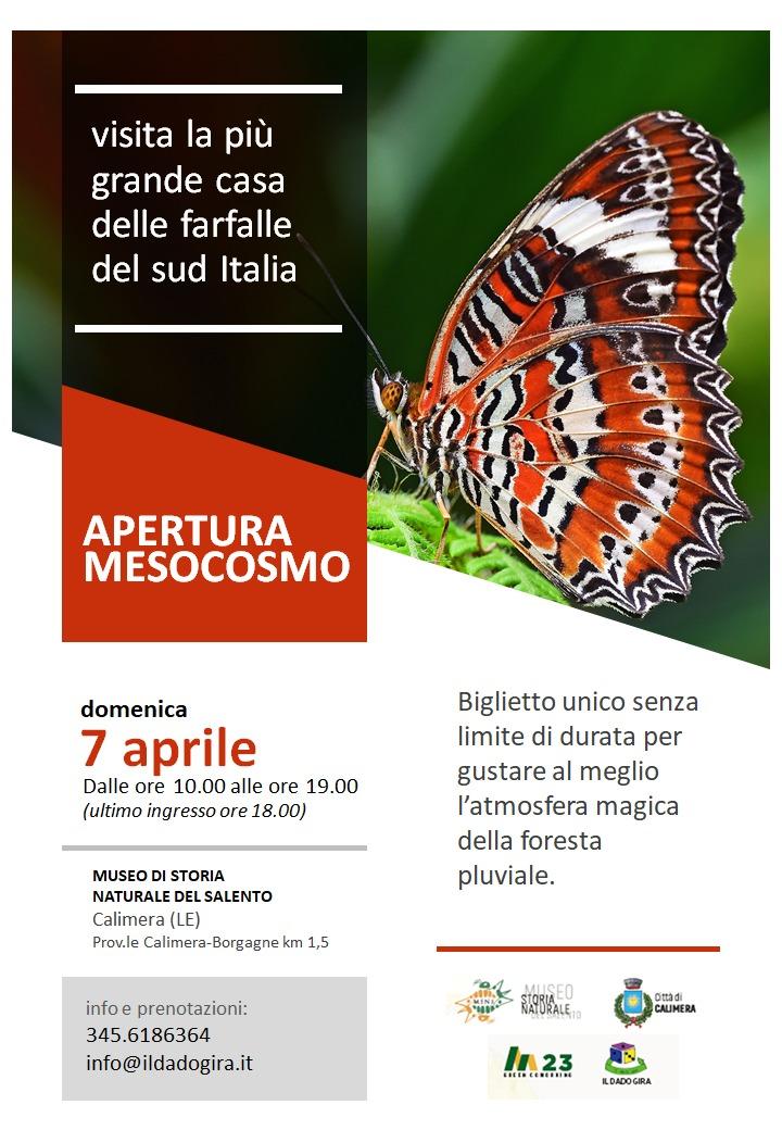 Riapre la Butterfly house del Museo