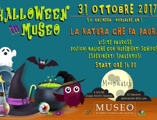 Halloween di terrore in Museo