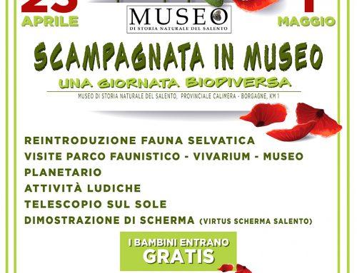 25 aprile e 1 maggio in Museo